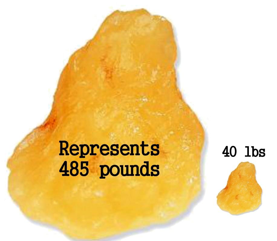 485 pounds 40 lbs